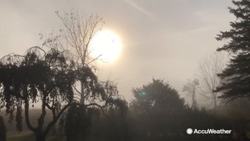 A wonderfully foggy day