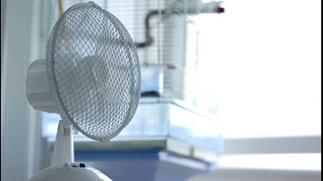 Beat the Summer Heat With 5 Fans That Feel Like Air Conditioners