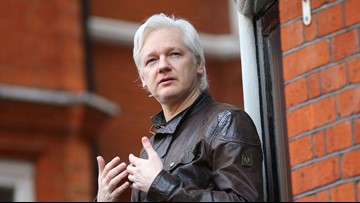 Wikileaks' Julian Assange facing US charges, court documents suggest