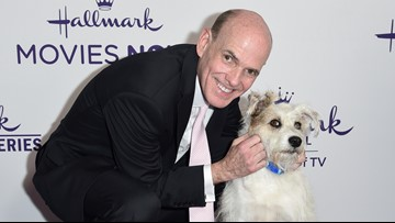 Hallmark media CEO leaves, month after same-sex ad backlash