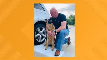 Mission Complete: A&M Vet school, charity help West Texas veteran fight for service dog's life