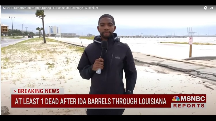 'Wacky guy' bombards MSNBC reporter live on air during Hurricane Ida coverage