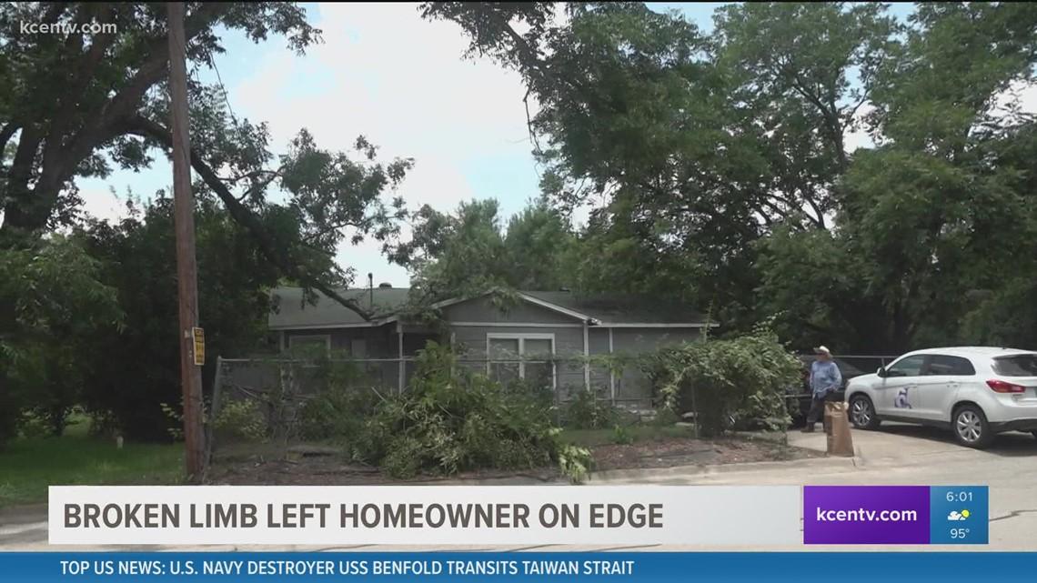6 Fix: Fallen branch threatened power lines