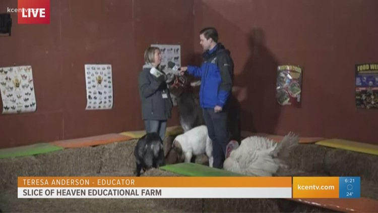 Slice of Heaven Educational Farm teaches kids where food comes from