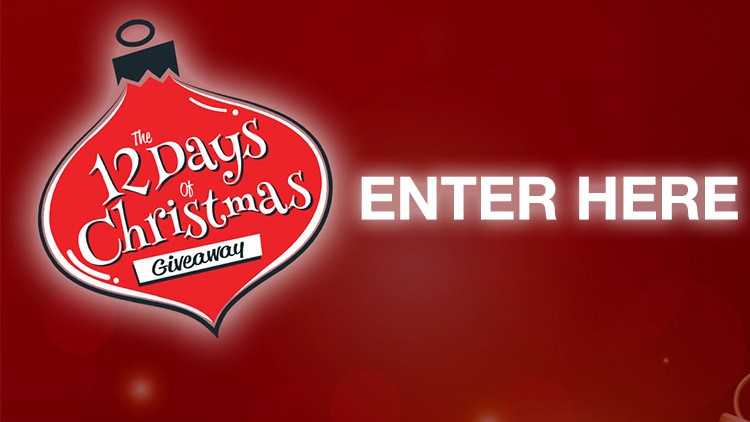 Enter to win the 12 Days of Christmas giveaway