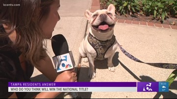 Final Four Coverage: Tampa residents pick who they think will win the National Championship