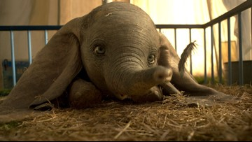 'Dumbo' flies into theaters for box office premier
