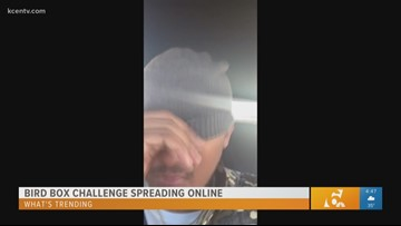 What's Trending: Bird Box challenge spreading online