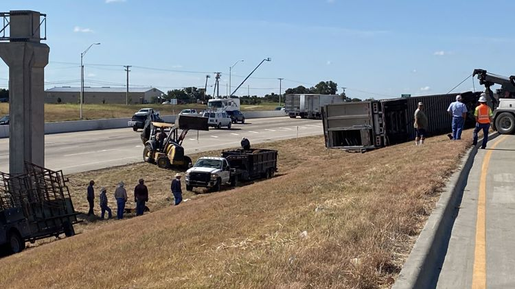 1 injured, at least 1 cow died after cattle truck overturned near Bell County Expo Center