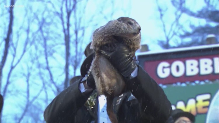 Six more weeks of winter after groundhog sees his shadow