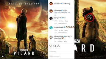 The dog, not Patrick Stewart, is the real star of first 'Picard' poster