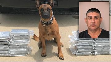 K-9 deputy makes $1.4M cocaine bust on Southwest Freeway, sheriff's office says
