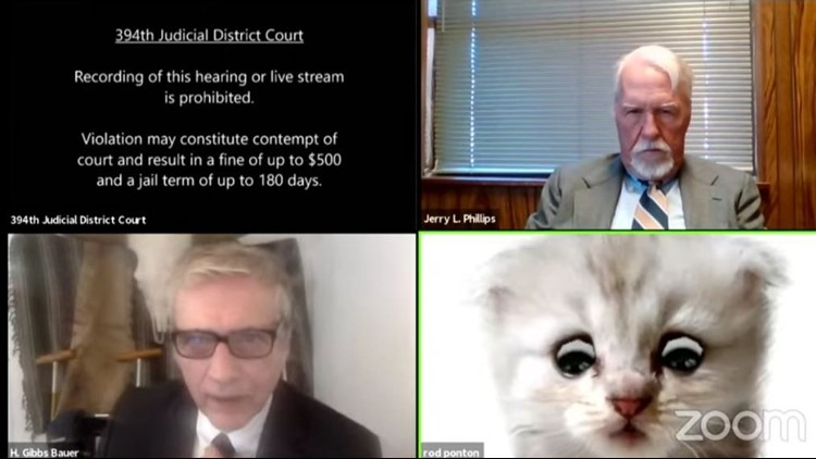 Oops! Lawyer mortified when cat filter crashes Zoom call during Texas court case