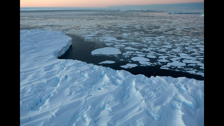 Mystery in the Frost: Deadly viruses that live in the Arctic could cause the next pandemic, scientists warn