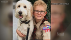 Cub scout 'heartbroken,' kicked out of his den for asking CO state senator tough questions