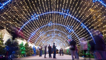 Austin's Trail of Lights nominated for 'Best Public Holiday Lights Display' in America