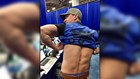 'I got hooked' | Sugar Bowl photographer shows 'scratch' after Bevo attacks Georgia bulldog