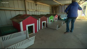 Texas highschoolers build and donate dog houses to animal shelter