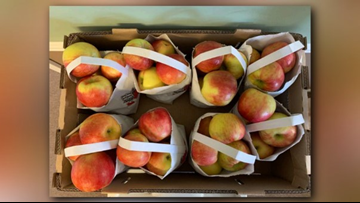 Apples shipped to Texas, 7 other states recalled due to potential listeria contamination