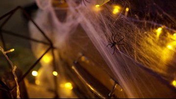 Halloween Home Decor Can Hurt Wildlife
