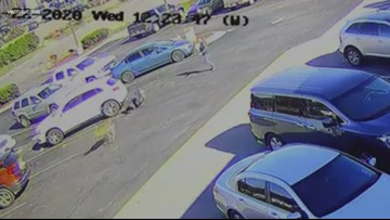 Deer runs man over in parking lot in shocking video