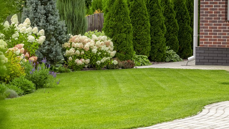 How to take your yard and garden to the next level