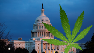 Marijuana moves one step closer to decriminalization