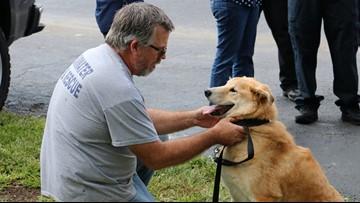 Arson dog's final radio dispatch will make you cry